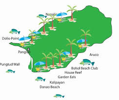alona resort map cebu dive site panglao island