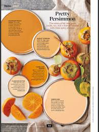 beautiful orange best orange paint colors from better homes and