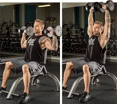 Full Body Dumbbell Workout No Bench The Ultimate Beginner U0027s Full Body Workout