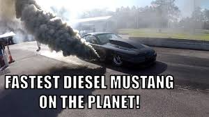 powerstroke mustang diesel mustang powerstroke with huge cam and lope youtube