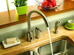kitchen faucets danze danze opulence kitchen faucet imindmap us