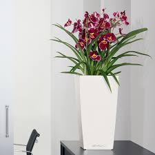 window planters indoor indoor planters urn planter window boxes and more