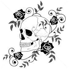 skulls stock photos stock images and vectors stockfresh