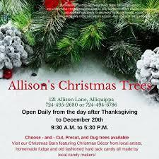 allison u0027s christmas trees home facebook