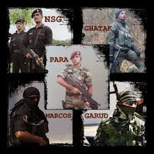 how are garud commandos trained how is their training different