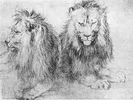 file durer lions sketch jpg wikimedia commons