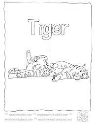 37 u003ell u003c coloring sheets animals images