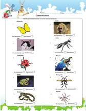 free printable worksheets vertebrates invertebrates animal worksheets games quizzes for kids science