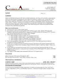 Example Of Executive Summary For Resume Doc 638825 Example Resume Objective Statement For Sales Resume