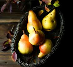 gourmet pears dipped chocolate pears eat healthy eat happy