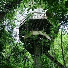 Treehouse Community by Finca Bellavista Youtube