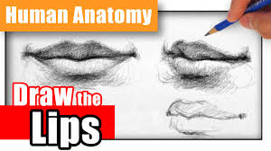 how to draw the lips the easy way different angles youtube