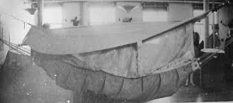 jungle hammock