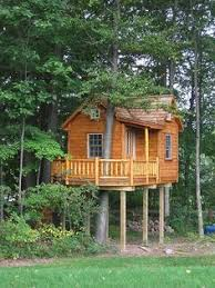Building A Tent Platform Building A Tent Platform Camp Pinterest Tents Tree Houses