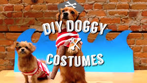 dog clothes for halloween easy diy halloween costumes for your pet dog youtube