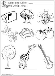 free worksheets living and non living things worksheets