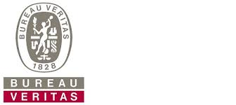 bureau veitas bureau veritas fleet passes 100 million gross tons