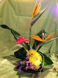 flower delivery springfield mo tropical flowers flowers seasonal flowers springfield mo