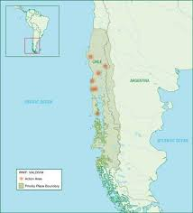 south america map rainforest keep earth s rainforests healthy