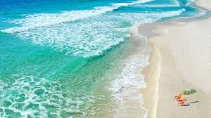 boardwalk beach resort panama city beach florida