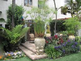 tropical landscaping for small yards tropical landscaping