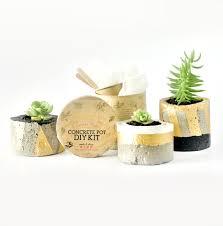 Giraffe Planter Diy Kit Concrete Pot Planter Craft Box Craft Kit From Arterno