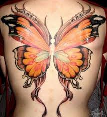 butterfly s back
