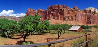 capitol reef national park map things to before you come capitol reef national park u s
