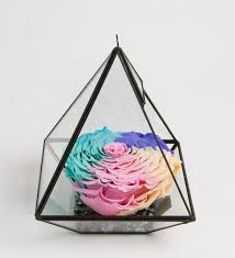 live forever rose in glass live infinity rose eternity rose