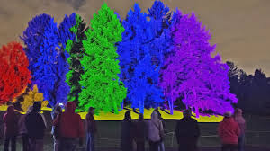 tree lights at the morton arboretum illumination tree lights at the morton arboretum 2017 youtube