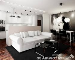home design charismatic twins bedroom ideas for small spaces home design small apartment living room ideas has incredible apartment living pertaining to apartment living