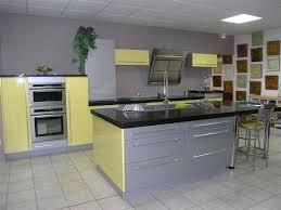 peinture sur faience cuisine quelle couleur de peinture pour une cuisine en bois clair choisir