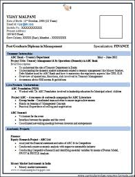 Sample Msw Resume by Format For Professional Resume