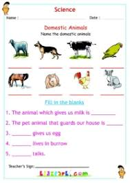 domestic animals science worksheet