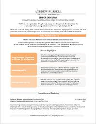 Resume Format Online by Professional Resume Examples By Gayle Howard Top Margin Executive Cvs