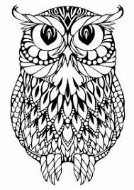Best 25 Owl Coloring Pages Ideas On Pinterest Free Coloring Owl Color Pages