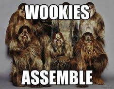 Chewbacca Memes - chewbacca is interesting most interesting man pinterest