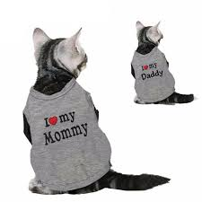 cat costume cotton shirt cat costume clothes vest pet clever