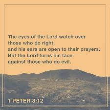 3163 best bible verses images on bible verses words