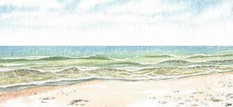 beach donar u0027s sketchbook
