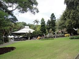 Sydney Botanic Gardens Restaurant In The Distance The White Roof Of The Restaurant In The Botanic