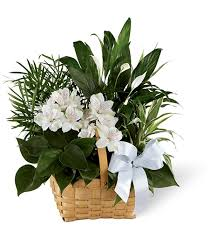 flower delivery cincinnati send flowers in cincinnati flower delivery to funeral homes and