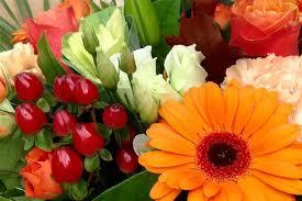 Flower Shops Inverness - blog simpsons florists inverness