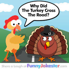 why did the turkey cross the road turkey joke