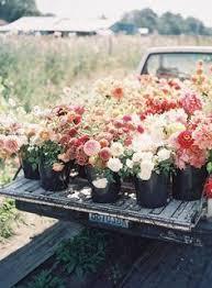 truck full of flowers photography pinterest flowers gardens