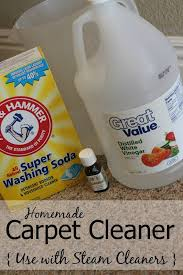 How Much To Dry Clean A Rug Best 25 Carpet Shampoo Solution Ideas On Pinterest Diy Carpet