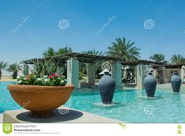 beautiful swimming pool view with palms jugs and flowers at