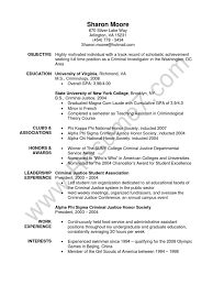 Cover Letter For Fashion Buyer by Amazing Grocery Bagger Resume Pictures Simple Resume Office