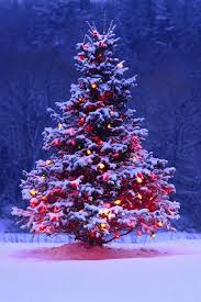 incredible ideas christmas trees with lights holiday time pre lit