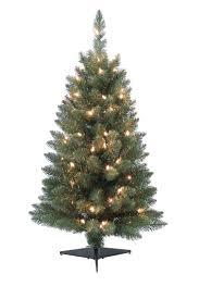 small pine trees hixathens com